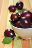 Fresh ripe plums. In white bowl. Selective focus, shallow dof Royalty Free Stock Photography