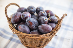 Fresh ripe plums Royalty Free Stock Image