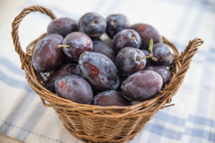 Fresh ripe plums Stock Photo