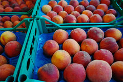 Fresh ripe plums in boxes in whole sale market Stock Photos