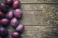 Fresh ripe plums. Royalty Free Stock Image