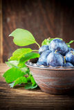 Fresh ripe plums in pottery handmade Royalty Free Stock Photo
