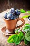 Fresh ripe plums in pottery handmade Royalty Free Stock Image