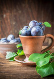 Fresh ripe plums in pottery handmade Stock Images