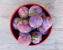 Fresh ripe plums in a red plate close-up on old gray board Royalty Free Stock Photography