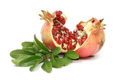 Fresh ripe pomegranate Royalty Free Stock Photos