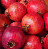 Fresh ripe pomegranates t outdoor farmers market. Royalty Free Stock Photography