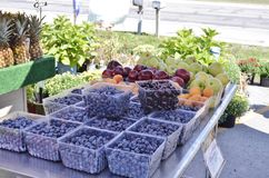 Fresh ripe produce displayed for sale Stock Images