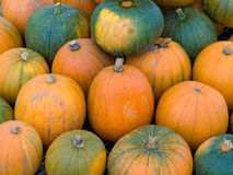 Fresh Ripe Autumn Pumpkins Stock Photo