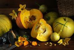 Fresh ripe pumpkins on a table Royalty Free Stock Photography