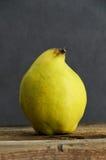 Fresh ripe quince fruit Stock Image