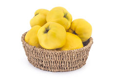 Fresh ripe quinces. Fresh ripe yellow quinces in woven basket  on white background Stock Photo