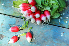 Fresh ripe radish closeup. Fresh ripe radish on the old, wooden table, closeup Royalty Free Stock Photography