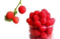 Fresh ripe raspberries. In the glass Royalty Free Stock Photos