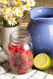 Fresh ripe raspberries and camomile flowers. Still-life with jar of fresh ripe raspberries, half of lime, blue jug and bunch of camomile flowers on old wooden Royalty Free Stock Photos