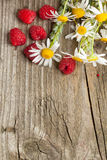 Fresh ripe raspberries and camomile flowers Royalty Free Stock Photos