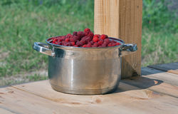 Fresh ripe raspberries in a large saucepan. Against garden backgroung Stock Photo