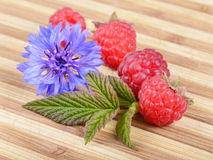 Fresh Ripe Raspberries with Leaf and Blue Flower. Fresh Ripe Raspberries with Leaf and Blue Cornflower Flower on Old Wooden Hardboard Royalty Free Stock Photo