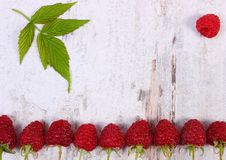 Fresh ripe raspberries with leaf, copy space for text on old rustic board. Fresh ripe raspberries with green leaf and copy space for text on old rustic wooden Royalty Free Stock Photo