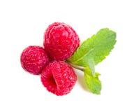Fresh ripe raspberries macro shot isolated Royalty Free Stock Image