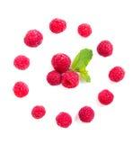 Fresh ripe raspberries macro shot isolated Royalty Free Stock Images