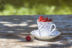 Fresh ripe raspberries and an old porcelain cup with a saucer on a wooden table in the garden. Royalty Free Stock Images