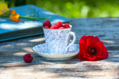 Fresh ripe raspberries and an old porcelain cup with a saucer on a wooden table in the garden. Stock Images