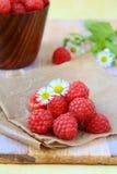 Fresh ripe raspberries still life Stock Photography
