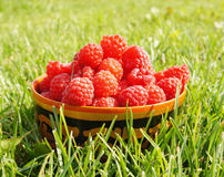Fresh ripe raspberry Royalty Free Stock Images