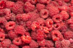 Fresh ripe raspberry as a background. Photo of an abstract texture Royalty Free Stock Photos