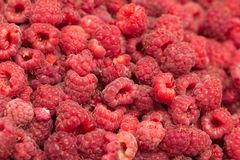 Fresh ripe raspberry as a background. Photo of an abstract texture Royalty Free Stock Image