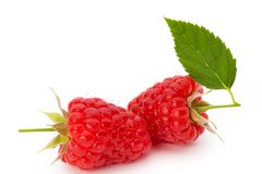 Fresh ripe raspberry with leaf isolated on the white background. Ripe raspberry with leaf isolated on the white background Royalty Free Stock Photography