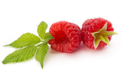 Ripe raspberry with leaf  on the white background. Fresh ripe raspberry with leaf  on the white background Stock Photo