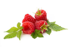 Ripe raspberry with leaf  on the white background. Fresh ripe raspberry with leaf  on the white background Stock Images