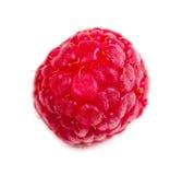 Fresh ripe raspberry macro shot isolated. Fresh ripe raspberry macro shot on white background isolated, red summer fruit Stock Images