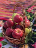 Fresh ripe red apples in a basket. Some ripe red apples in a basket stock photos