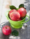Fresh ripe red apples Stock Image