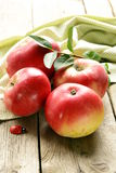 Fresh ripe red apples Stock Photos