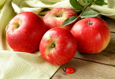 Fresh ripe red apples Royalty Free Stock Image
