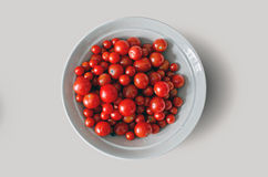 Fresh ripe red cherry tomatoes on a white plate, home grown autumn harvest -    background - clipping path. Fresh ripe red cherry tomatoes on a white plate, home Royalty Free Stock Photos