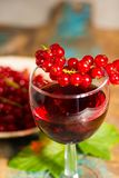 Fresh ripe red currant berries and liqueur on the table. Healthy food royalty free stock images