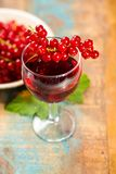 Fresh ripe red currant berries and liqueur on the table. Healthy food stock photography