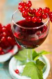 Fresh ripe red currant berries and liqueur on the table. Healthy food stock photos