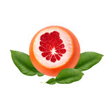 Fresh ripe red grapefruit with green leaves. Red sliced citrus isolated. Royalty Free Stock Photos