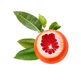 Fresh ripe red grapefruit with green leaves. Red sliced citrus isolated. Stock Images