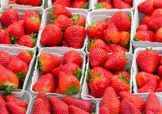 Fresh ripe red straberries at the market Stock Photo