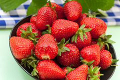Fresh ripe red strawberries Royalty Free Stock Photos