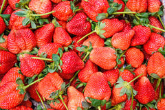 Fresh ripe red strawberries wallpaper. Stock Photography