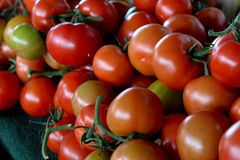 Fresh ripe red tomatoes. Display of red tomatoes with green stems stacked for sale Stock Image