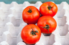 Fresh ripe red tomatoes in the box Stock Photography